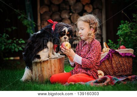 happy child girl with her dog harvesting apples in autumn garden kid training her dog and feed him