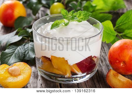 fresh greek yogurt with cherry plums decorated with mint leaves in cup branch with green and ripe plums on background close-up macro