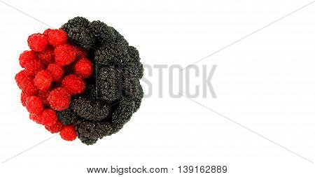 Red raspberry and dark mulberry in the form of Yin Yang isolated on white background with copy space. Healthy food. Artistic retouching.