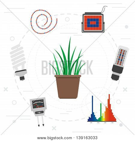 Vector concept special equipment for phyto light for plants in flat style. Range of LED light