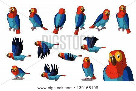 Set of Macaw Parrot images. Digital painting full color cartoon style illustration isolated on white background.