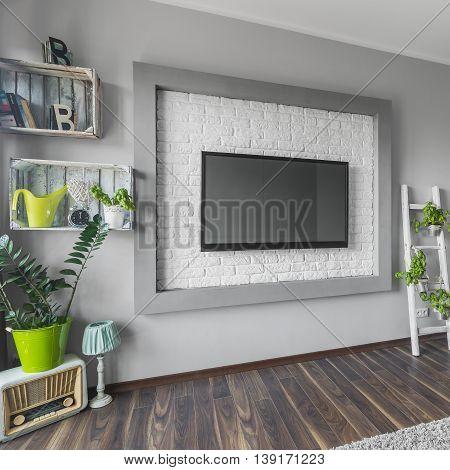 Big Tv And Creative Decorations