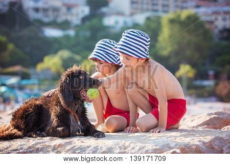 Two Sweet Children, Boys, Playing With Dog On The Beach