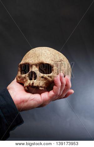 Hand holding human skull on dark background