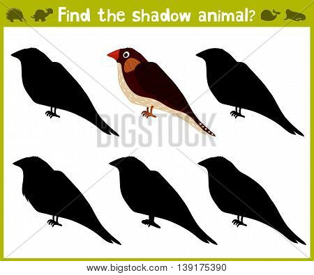 Educational game for children of kindergarten and school age on the development of logic. Birds. Vector illustration