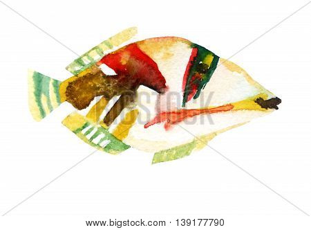 Exotic fish isolated on white background - tropical Picasso triggerfish. Watercolor raster illustration