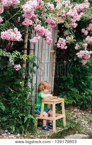 Small Boy Eating Near Rose Bush