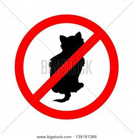 No cats sign, do not allowed on white background