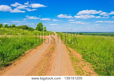 Dirt road in the field a sunny summer day