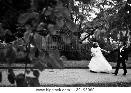 Happy Wedding Couple In Love At Autumn Park