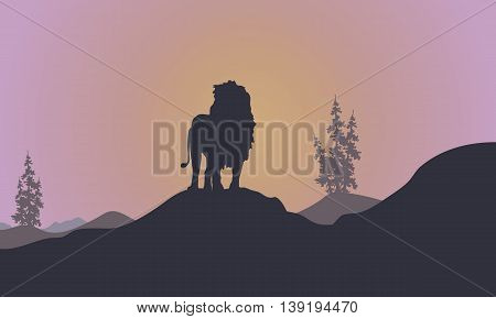 Silhouette of Lion at afternoon landscape vector