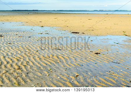 Sandbank of a Dutch estuary at low tide on an early morning in summertime.