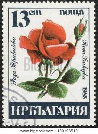 BULGARIA - CIRCA 1985: A Stamp printed in Bulgaria shows a series of images