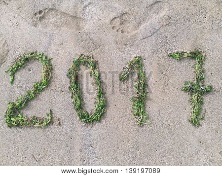 A photo composition made with seaweeds on the sand welcoming the year 2017