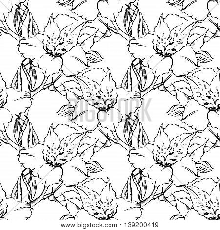 Monochrome alstroemeria floral seamless pattern texture background
