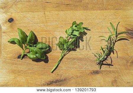 Fresh herbs on wooden cutting board. Flat lay food ingredients.