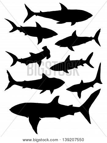 Collection of silhouettes of predatory fish. Set. Sharks. Marine predators. Circuit. Tattoo.