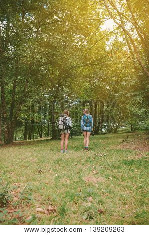 Back view of two women friends with backpacks standing into the forest