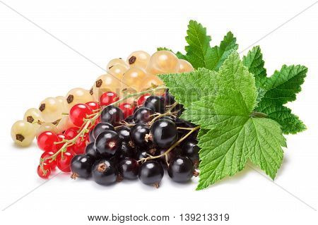 Clusters (bunches) Of Red,white And Black Currants Together