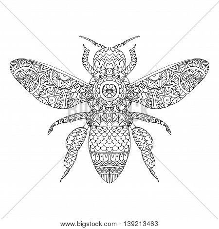 Beetle deer. Horned Beetle. Big. Insect. Set. Line art. Black and white drawing by hand. Graphic arts. Doodle. Tattoo. Lucanus cervus.