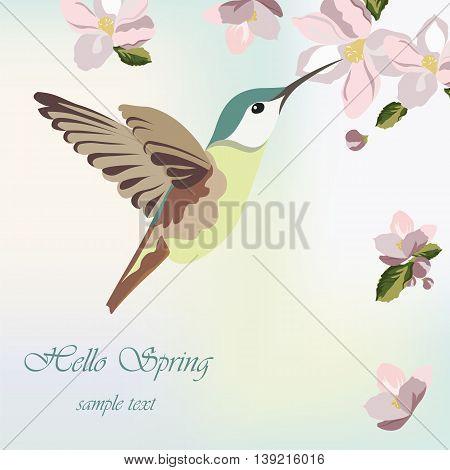 Spring Blossom Flowers and hummingbird Vector illustration