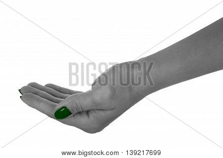 Palm up showing anything, beautiful female's skin, green manicure. Isolated on white background.
