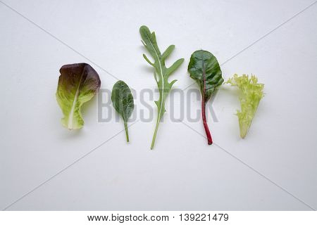 Individual Leafy Green Salad Ingredients Side By Side