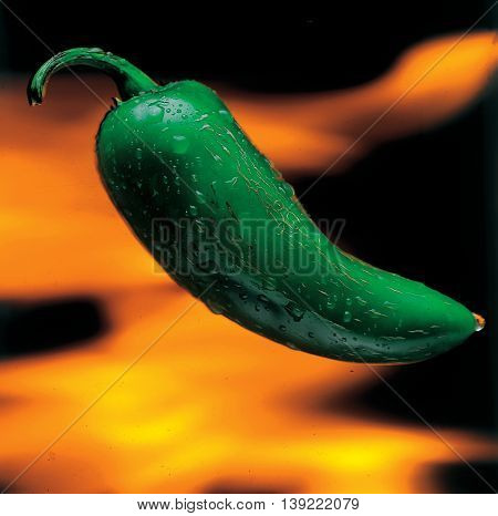 Delicious gourmet plate with texture and color. Green hot chillipepper