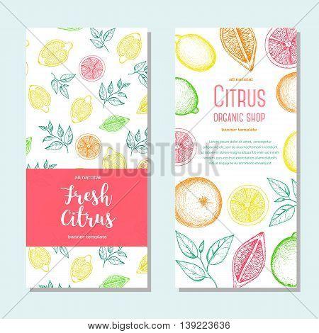 Citrus vertical flyer collection. Lemons and orange hand drawn in ink illustration. Vector vintage fresh illustration. Line art graphic.