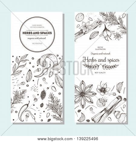Herbs and spices banners vintage design template. Vertical flyer set. Vector illustration hand drawn linear art.