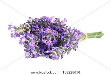 Tied bunch of lavender flowers on white background