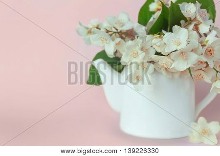 Fresh jasmine flowers in watering can on color background