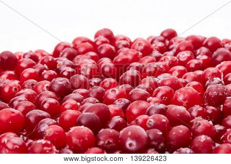 Fresh frozen red cranberries on a white background