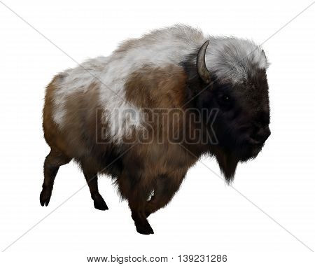 American bison with snow isolated in white background - 3D render