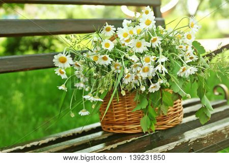 Wicker basket with bouquet of daisy flowers on the bench