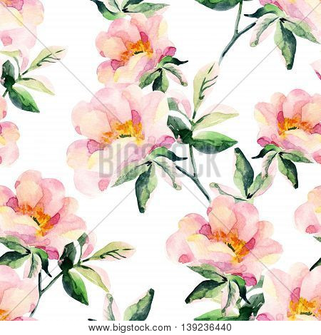 Watercolor briar flowers seamless pattern. Dog Rose branches on white background. Hand painted illustration vintage inspired
