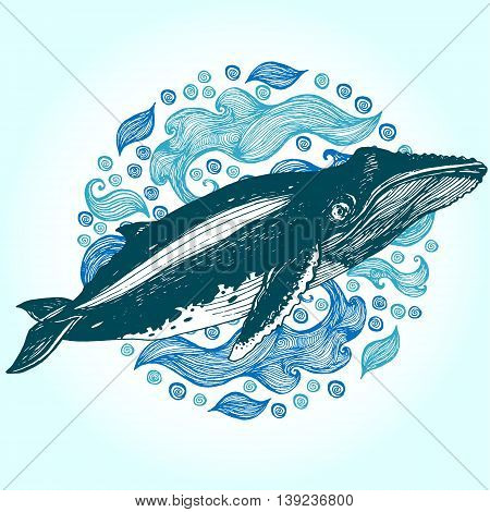 Humpback whale Hand drawn vector illustration. Drawn in ink.