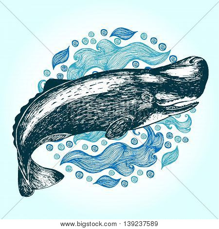 Cachalot sperm whale. Hand drawn vector illustration. Drawn in ink.