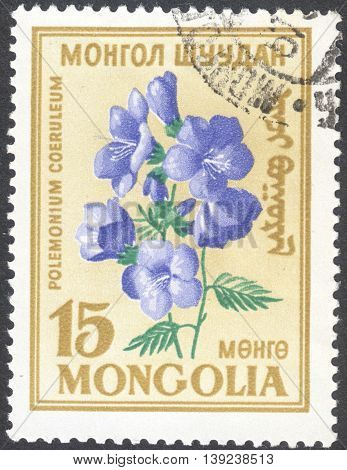 MOSCOW RUSSIA - CIRCA JANUARY 2016: a post stamp printed in MONGOLIA shows a flower with the inscription