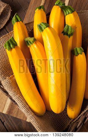 Raw Organic Yellow Zucchini Squash