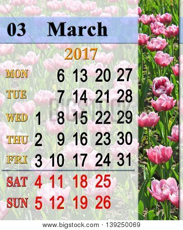 calendar for March 2017 with flower bed of lilac tulips