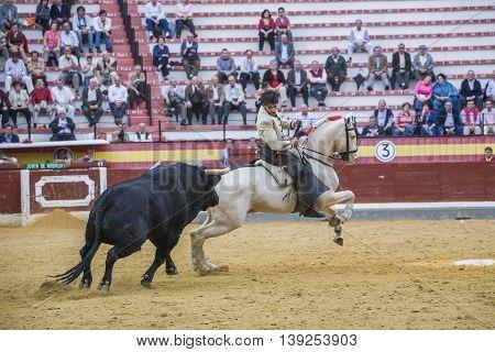 Jaen SPAIN - October 13 2008: Diego Ventura bullfighter on horseback spanish Jaen Spain
