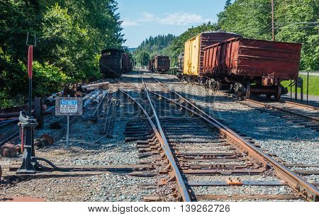 Old deserted trains sit on tracks in the Pacific Northwest.