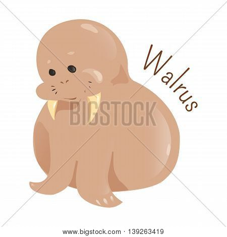 Walrus isolated on white background. Odobenus rosmarus. Only living species in the family Odobenidae. Vibrissae. Part of series of cartoon northern animal species. Child fun pattern icon. Vector