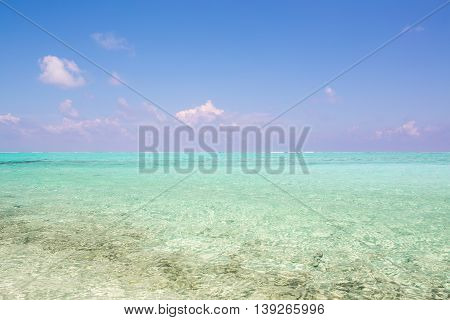 beautiful blue sun sea tropical nature background holiday luxury resort island atoll about coral reef amazing fresh fantastic freedom snorkel adventure Fiji spa. Coconuts