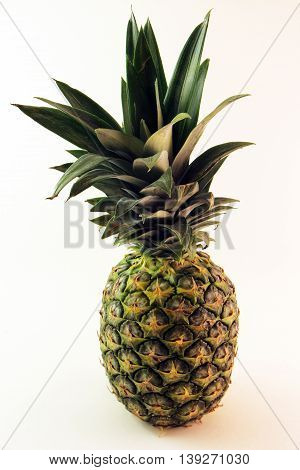 Large Organic Pineapple -  Vitamin and nutrient packed tropcial fruit.