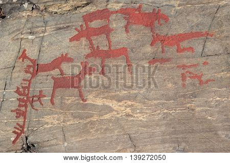 Ancient Rock Paintings In Naesaaker Ins Sweden