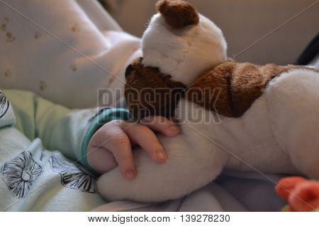 Baby hand resting on stuffed dog.  nap two