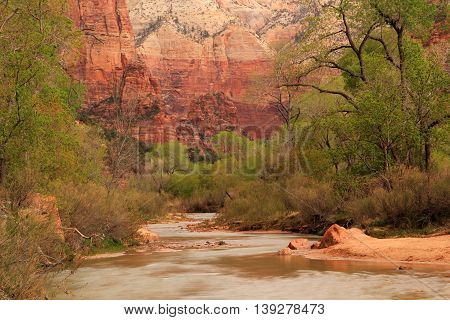 North Fork of the Virgin River as it winds through Zion Canyon in Zion National Park, Utah