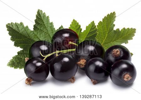 Cluster (bunch) Of Blackcurrant